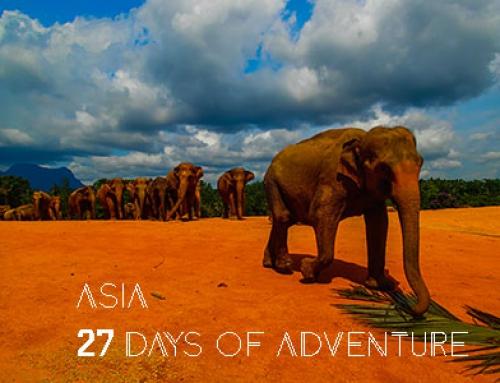 Film – Azja 2015 – Sri Lanka, Tajlandia, Wietnam, Filipiny, Emiraty