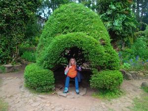 sri lanka nuwara eliya ogrod botaniczny
