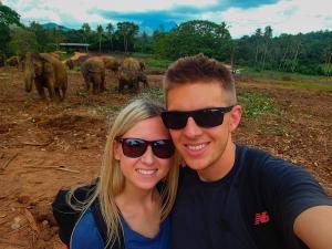 sri lanka pinnawala elephant orphange sierociniec dla sloni daleko od domu