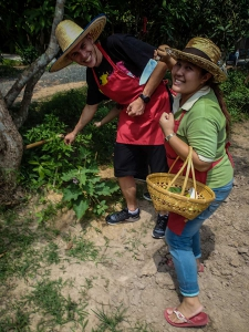 tajlandia chiang mai thai farm cooking school ruamchook market nauka gotowania farma