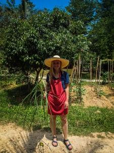 tajlandia chiang mai thai farm cooking school ruamchook market nauka gotowania farma trawa cytrynowa