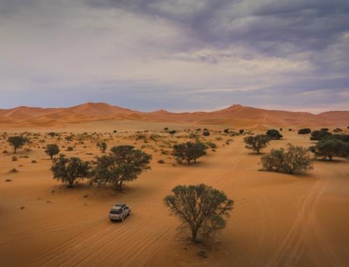 Namibia – Plan i koszt podróży