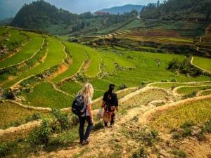 wietnam vietnam sapa lao cai pola ryżowe trekking