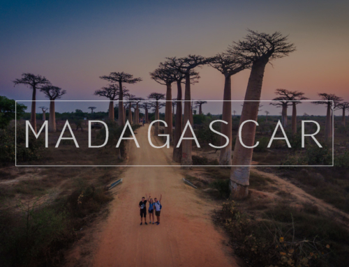 Film – Madagaskar 2017