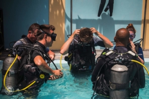 seszele seychelles praslin nurkowanie whitetip divers szkolenie basen